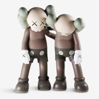 Kaws - Along The Way - Brown